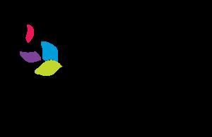 CEO-logo